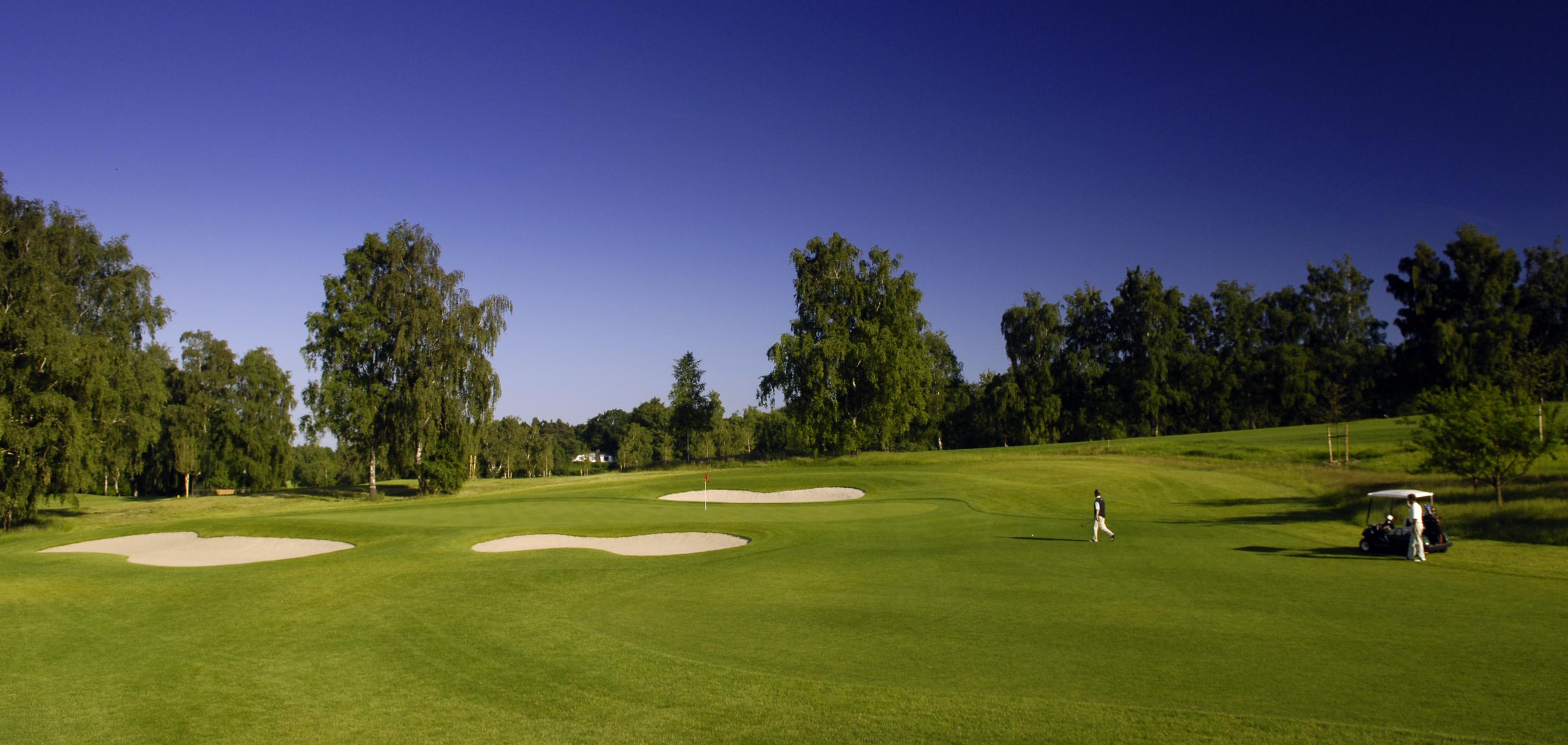 hittfeld golf